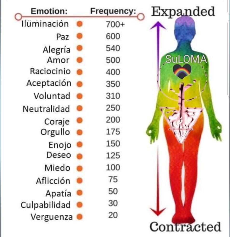 Frecuencia y emociones